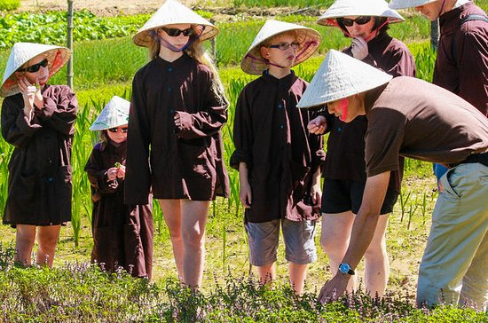 La Huong Organic Vegetable Village ...