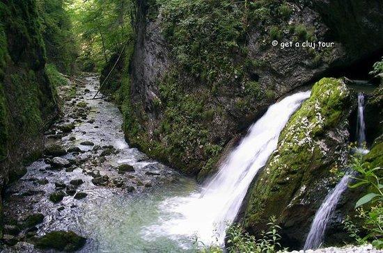 Parc naturel Apuseni randonnée et...