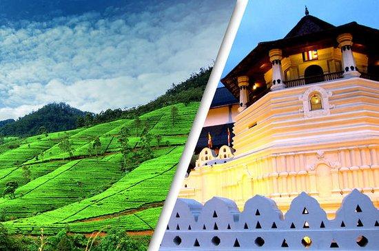 2 Day Tour to Kandy & Nuwara Eliya...