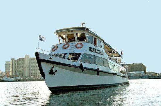 Buenos Aires City Tour et bateau à...