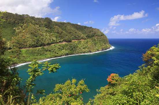 Road to Hana Tour: Waterfalls, Hiking, Rainforest, Aloha: Aloha Eco Adventures NR 1 Road To Hana Tours Waterfalls Hiking Rainforest Aloha