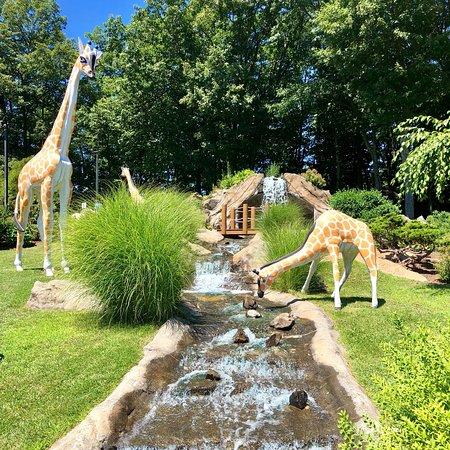 Safari Golf: photo2.jpg