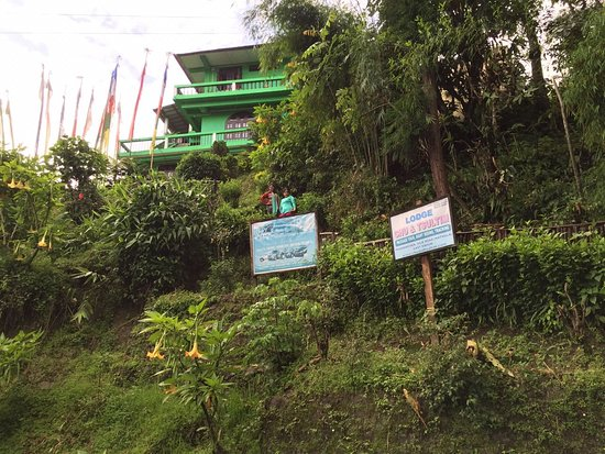 Nimachen, อินเดีย: our Homestay- Tsu-Tsultim Lodge