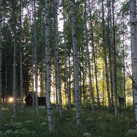Sulkava, Finlandia: Ett litet paradis ute i de finska skogarna!