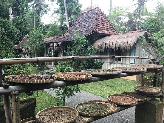 Genta Agrotourism