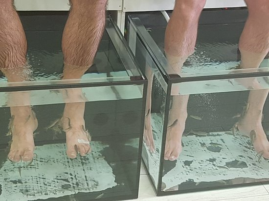 ‪SPA Fish Pedicure‬