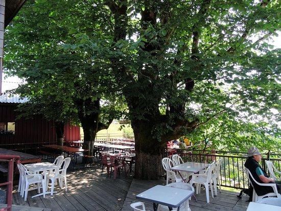 Fellering, Frankrike: superbe terrasse ombragée