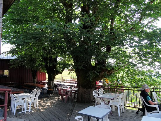 Fellering, França: superbe terrasse ombragée