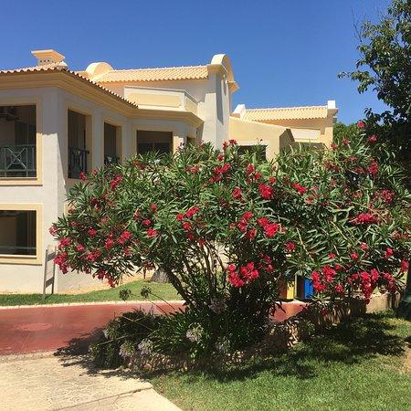 Adriana Beach Club Hotel Resort: photo2.jpg