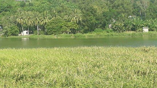 Khe Lau Lake