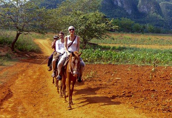 Horseback Tour: Tour del Silencio
