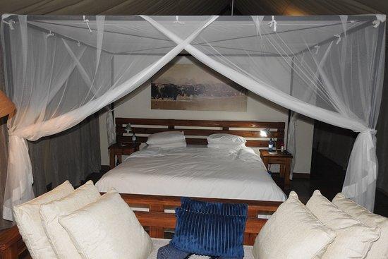 Manyeleti Game Reserve, Sudáfrica: DSCN2821_large.jpg