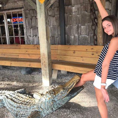 Phillippi Creek Village Restaurant Amp Oyster Bar Sarasota
