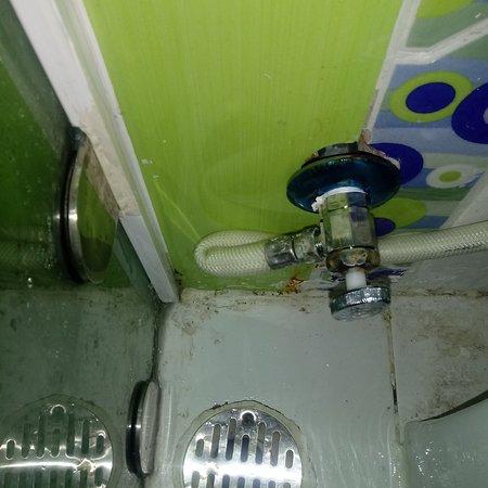karrikatur para la Puerta Divertido de Inodoro con ni/ños de WC trasl/úcido Pegatinas para la Puerta de inodoros o Cuarto de ba/ño # 14