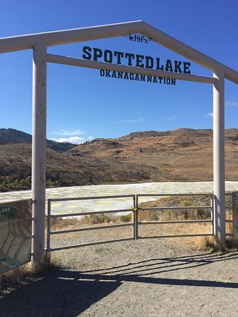 Spotted Lake: if you respect the gate that is there, it prevents you from getting closer to the lake.
