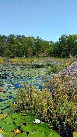 site rencontres nc kawartha lakes