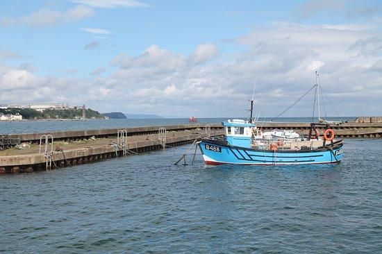 Islandmagee, UK: Ballylumford Harbour