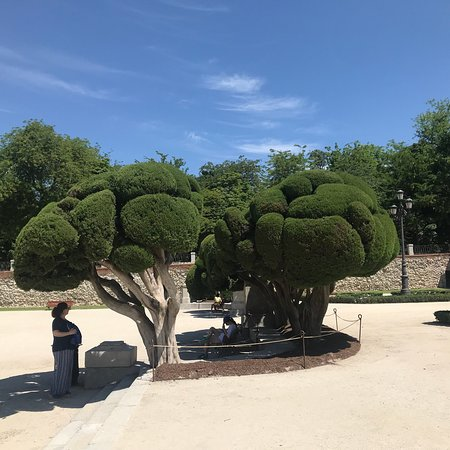 Retiro Park Photo