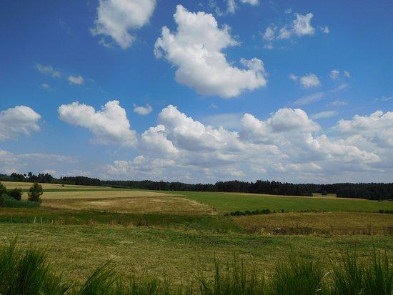 Beaune-sur-Arzon, ฝรั่งเศส: Paysage paisible sur la route du Clos