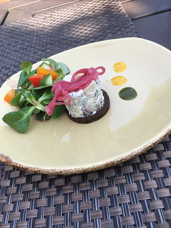 Weinwirtschaft: Tatar von der geräucherten Bachforelle auf Pumpernickel mit roten Senfzwiebeln und Ackersalat