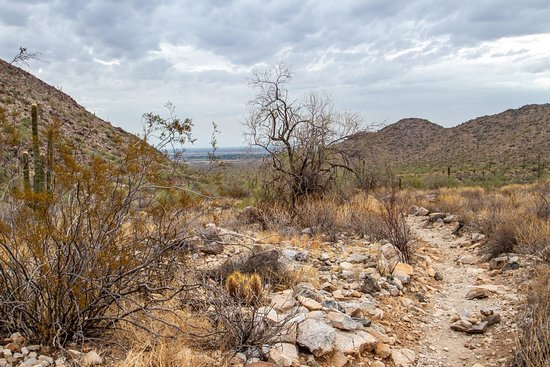 Waddell, AZ: More views of the trail