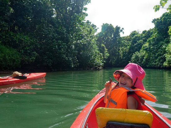 Small Group Kayaking Tour on the Rentapao River from Port Vila: paddling downstream