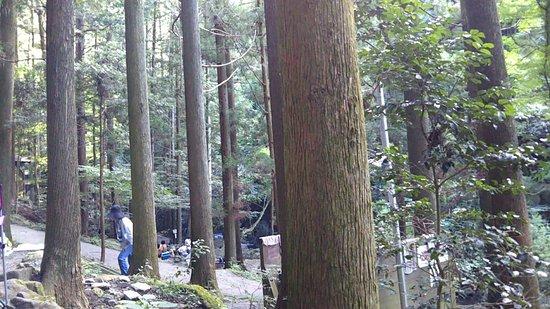 Kuragari Valley: line_1532154416704_large.jpg