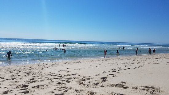 Island Beach State Park: Perfect day at the beach