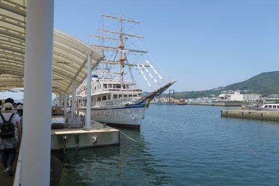 Uzushio Cruise: 日本丸