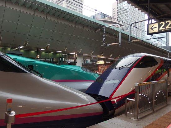 Yamagata Prefecture, Japon: 東北新幹線との連結