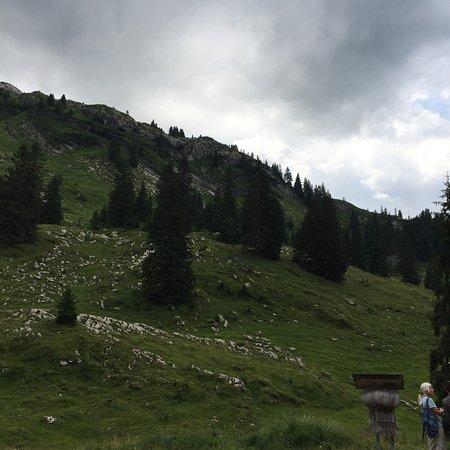 Muotathal, سويسرا: photo4.jpg