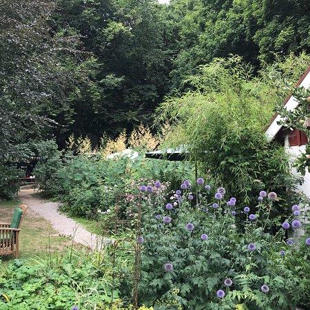 Veberöd, Sverige: Mycket trevligt på alla sätt. Underbar trädgård, gott fika och mycket trevligt bemötande. Barn-