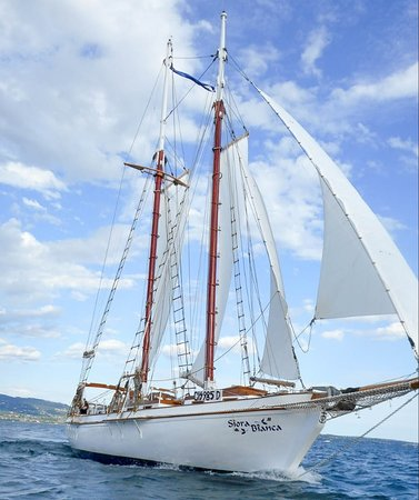 Siora Bianca under sail