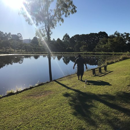 Amamoor, Australia: photo4.jpg