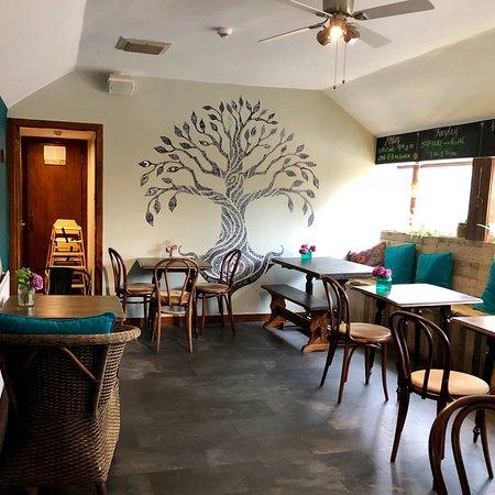 Bonobo Cafe: photo6.jpg