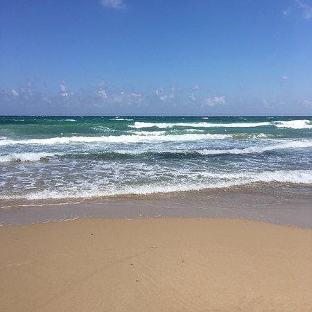 Benny Beach: photo0.jpg