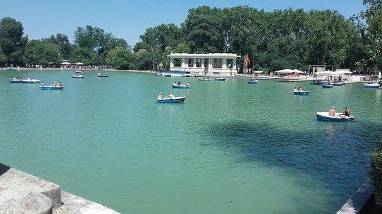 Retiro Park: Parc du Retiro