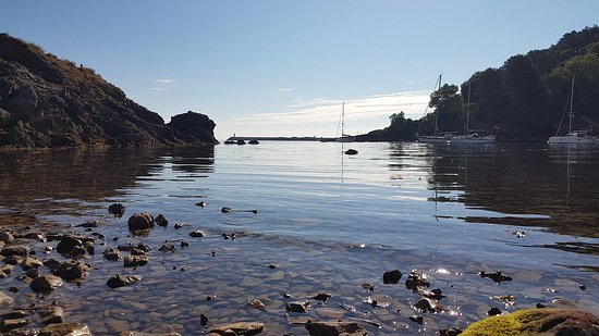 Churston Ferrers, UK: Nice secluded beach