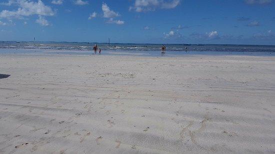 Paripueira Beach: 20180715_093355_large.jpg