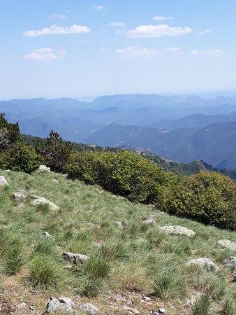 Meyrueis, France: Panorama mont Aigoual.