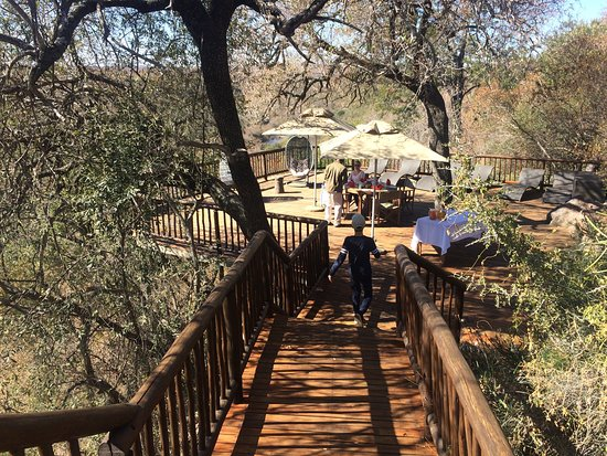 Vaalwater, South Africa: Brunch before leaving on the deck overlooking the Palala river