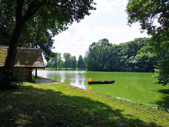 Martonvasar, Ungheria: IMG_20180721_114700_large.jpg