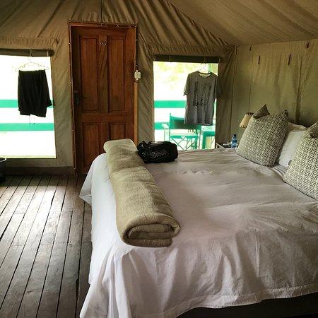 Timbavati Private Nature Reserve, Sydafrika: photo9.jpg