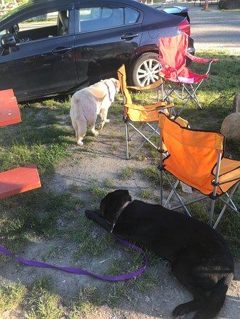 Brialee RV & Tent Park Resmi