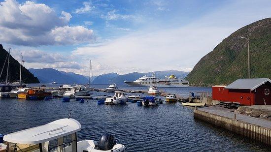 Vikoyri, Norwegia: Cruise boat outside Vik marina 21st of July 2018.