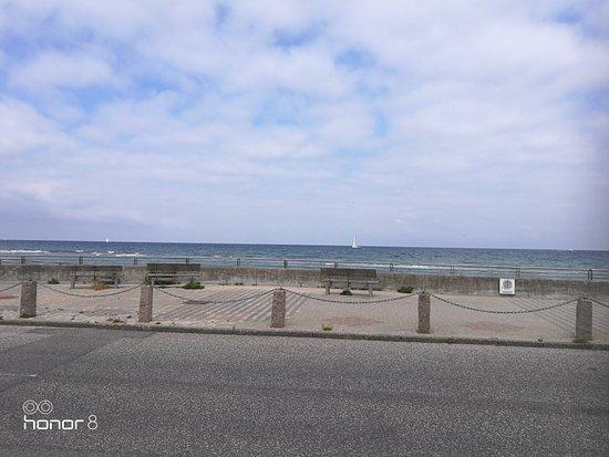 Raagelege, Denmark: IMG_20180715_103449_large.jpg