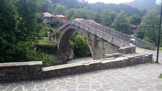 Vovousa, اليونان: Το περίφημο πέτρινο «γεφύρι της Βοβούσας» κτίσθηκε το 1748 με χορηγία του Αλέξη Μίσιου από το Μο
