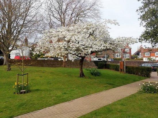 Manor Gardens: IMG_20180414_160211_large.jpg