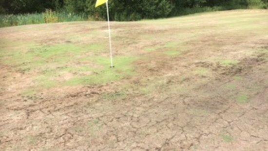 Edenbridge, UK: 4th hole