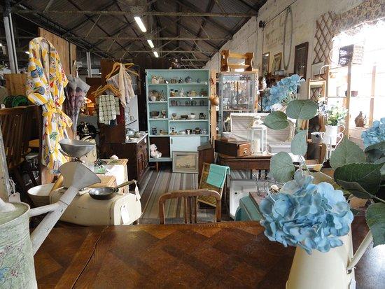 Dorchester Curiosity Centre: displays